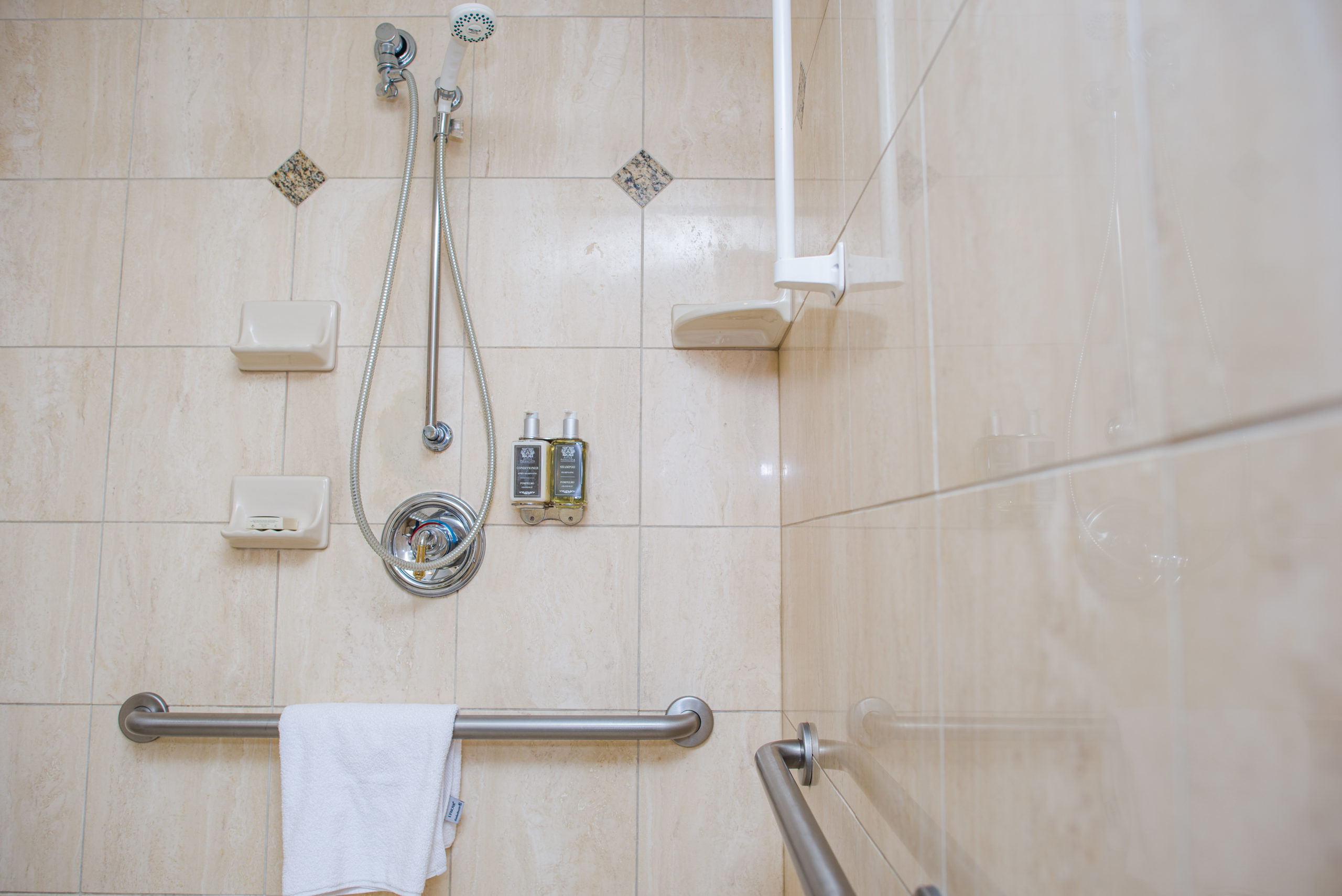 Accessible Room Rest Room-Shower